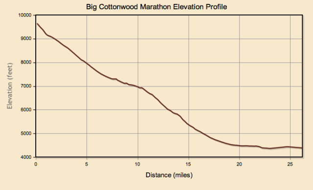 Marathon Elevation Map
