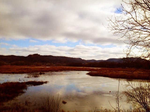 Marsh smaller