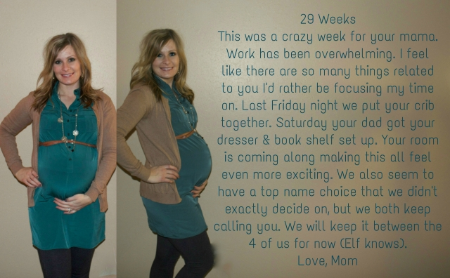 29 Weeks-Maternity Journal